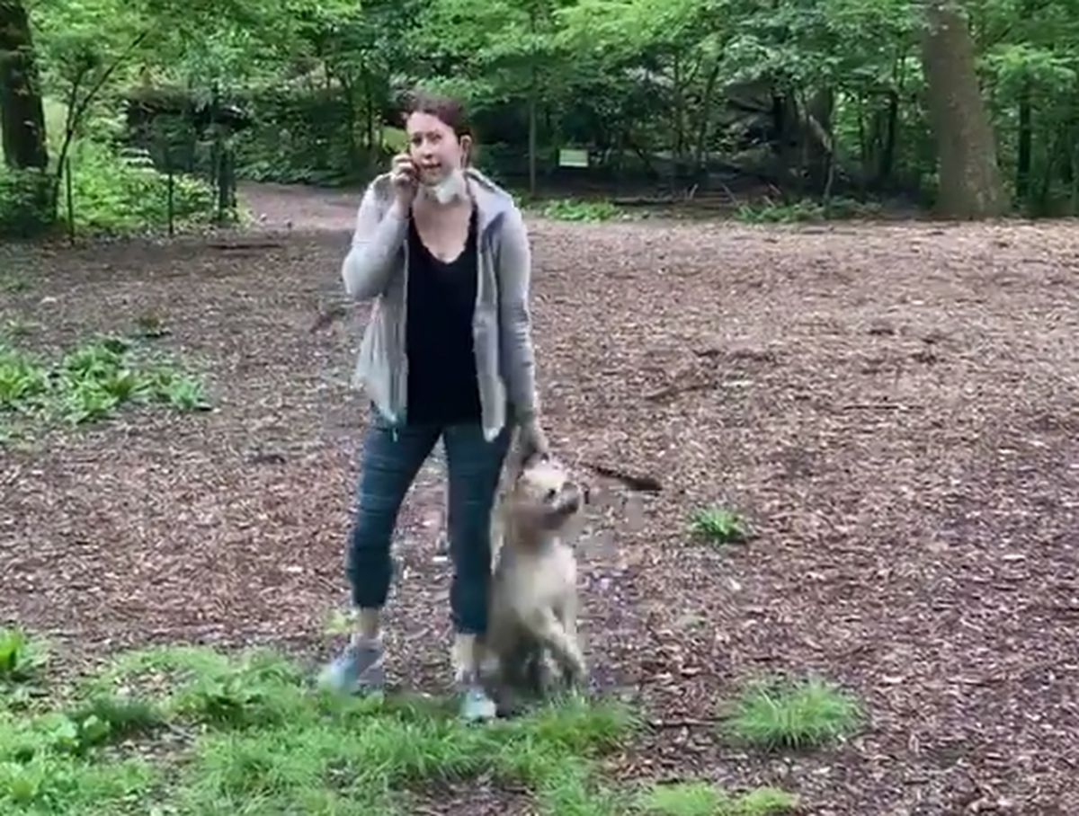 White Girl in Central Park Name Police {that a} Black Man Asking for Her Canine to Be Placed on Leash