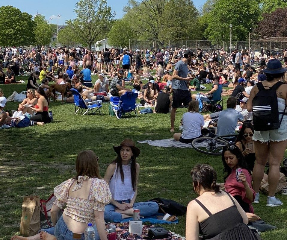 Vital and egocentric:' metropolis officers outraged over large crowds at Trinity Bellwoods